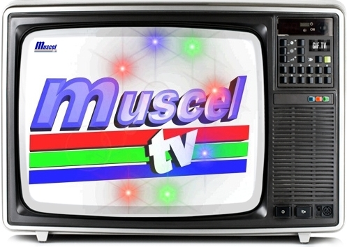 sigla_muscel_tv