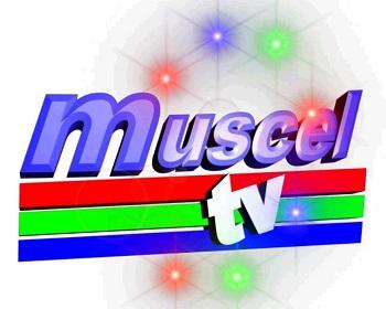 Aici este realizată şi prezentată o emisiune talk-show de către Răzvan Bucşoiu